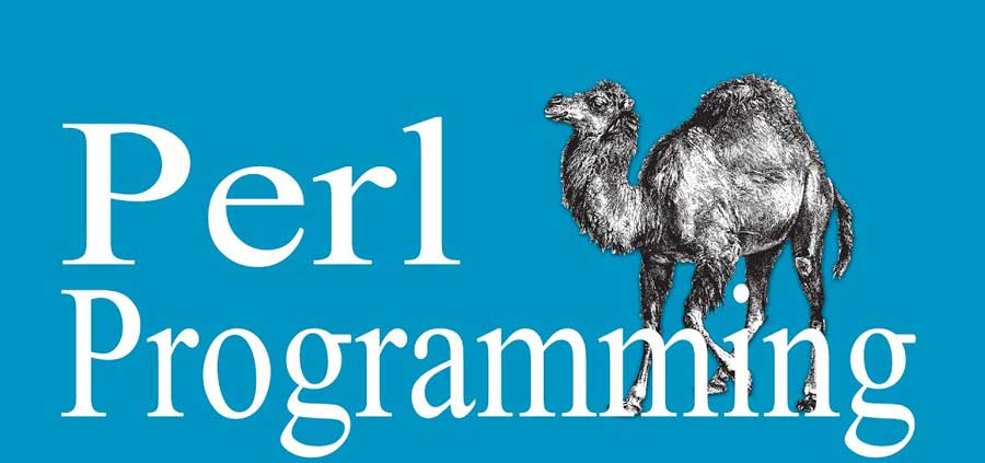 زبان برنامه نویسی perl چیست؟