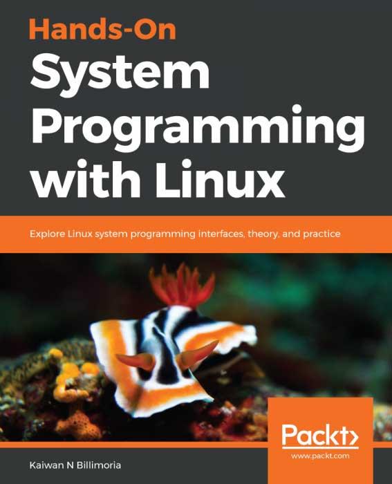 استفاده از زبان برنامه نویسی سیستمی در پردازنده های کوچک و ریز پردازنده ها