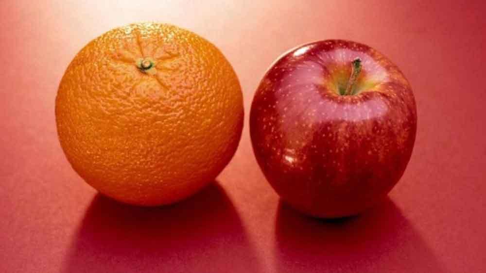 تفاوت ديدن و نگاه کردن در درس دوم آموزش عکاسی