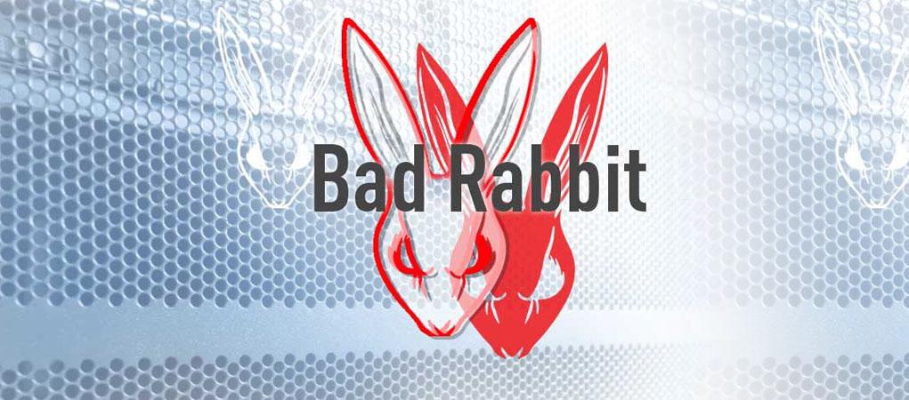 باج افزار خرگوش بد چیست