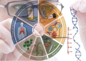کاربردهای مهندسی ژنتیک