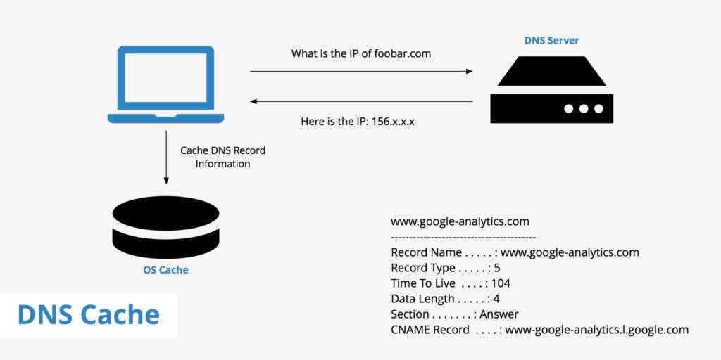 اهمیت استفاده از DNS چیست