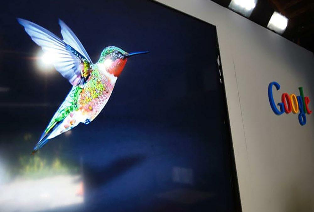 الگوریتم مرغ مگس خوار (algorithm Hummingbird) چیست؟