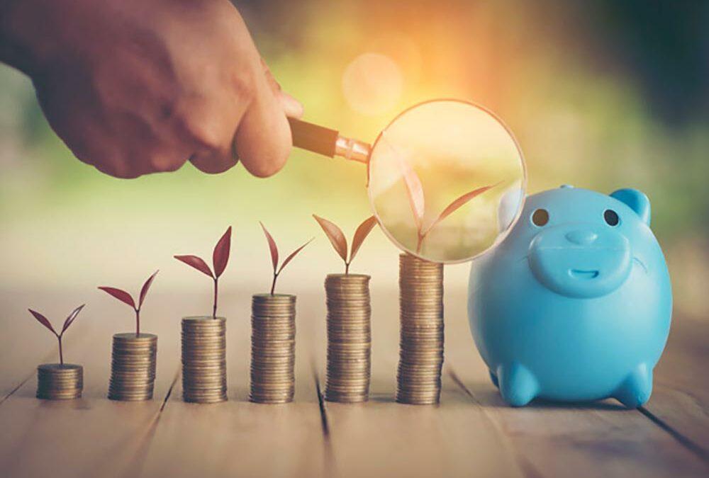 چه سرمایهگذاریهایی پرسود هستند؟