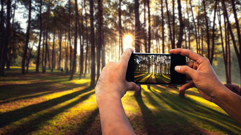 انواع فوکوس در گوشیهای هوشمند